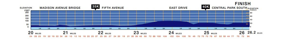 altimetria maratona de nova york final