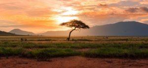 maratona-africa